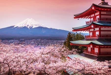 Le Japon, terre de contrastes