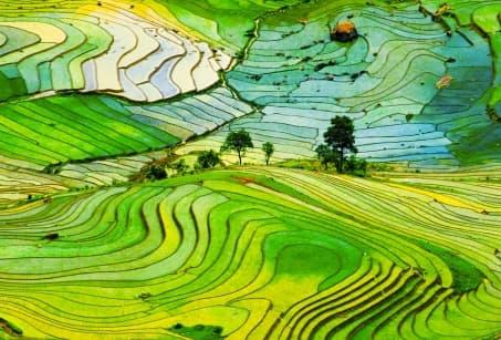 Immersion au cœur du Vietnam authentique