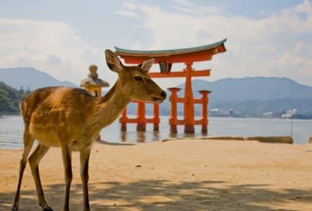 Japon : Une estampe du Soleil Levant
