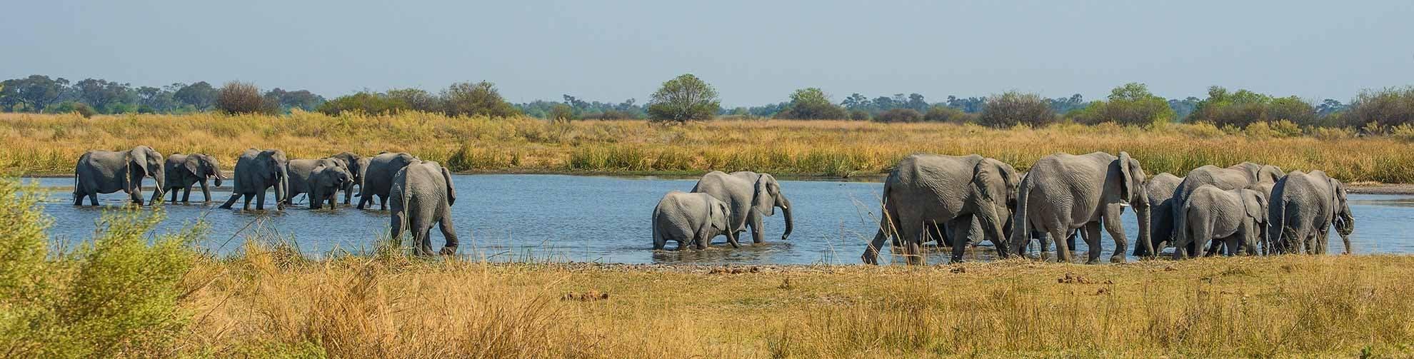 Fiche Pays Botswana