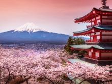 Voyage sur-mesure japan
