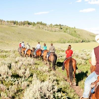 Balade en cheval vers le Mont Sulphur
