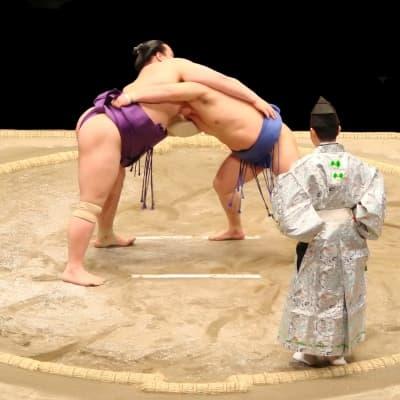 Assistez à un combat de sumos