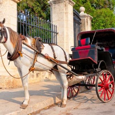 La Havane en calèche