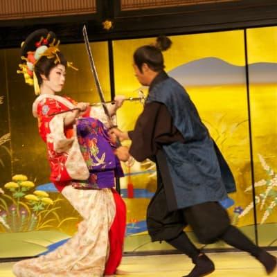 Parc à thèmes Edo Wonderland à Nikko
