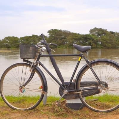 Découverte du site de Polonaruwa à bicyclette