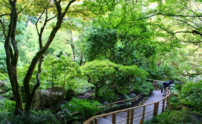 Splendides Jardin Butchard