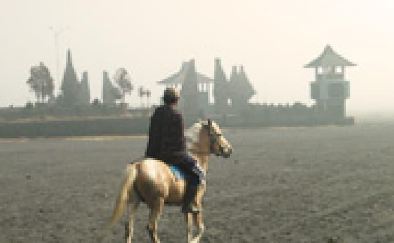 Caldeira du Mont Bromo à cheval