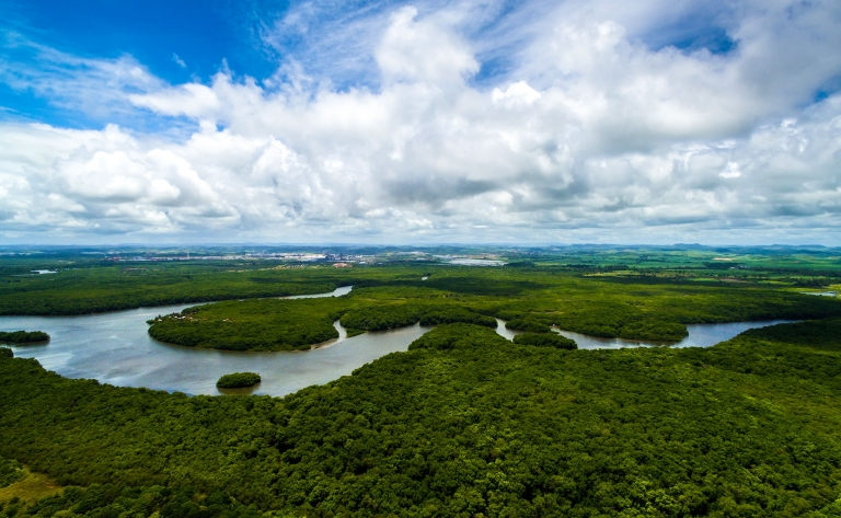 Tortuguero, la petite Amazonie du Costa Rica