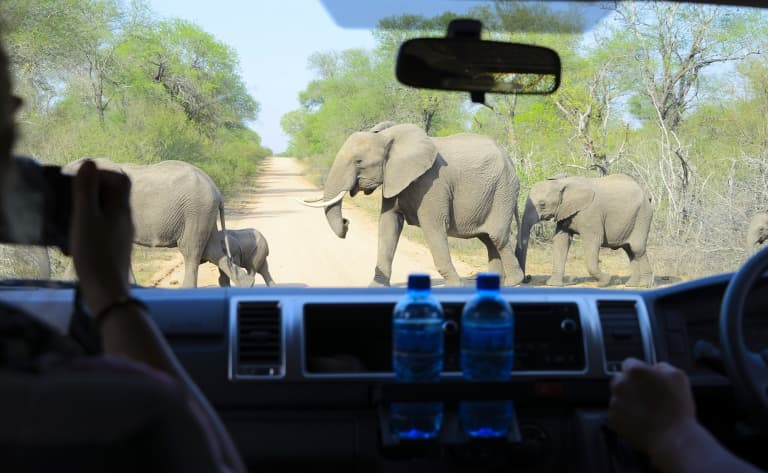 Un safari en 4x4 avec le Likweti Lodge & Sanctuary