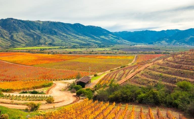 La vallée de Colchagua