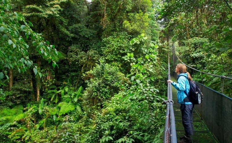 Exploration de nuit à Monteverde