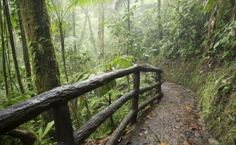 Vers le majestueux volcan de Rincon de la Vieja…