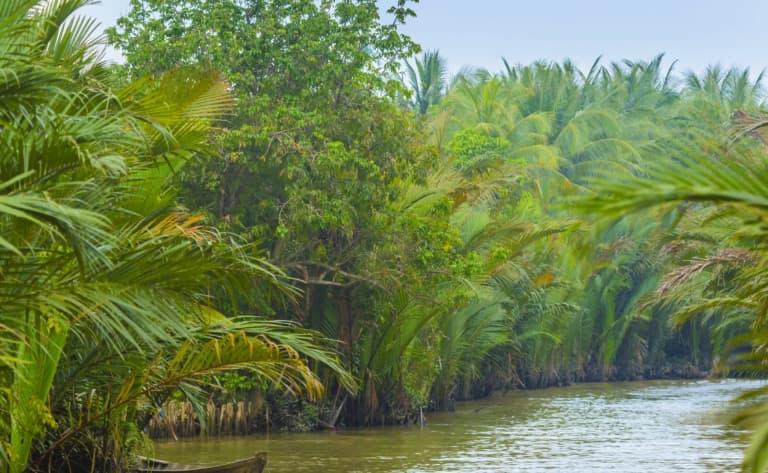 Croisière dans le delta du Mékong