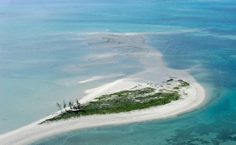 Sur les rives de l'Ocean Indien