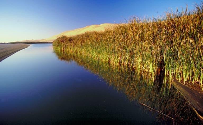Cap sur la rivière Kwando, écrin de l'île de Susuwe !
